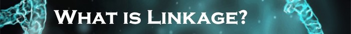 linkage what is it